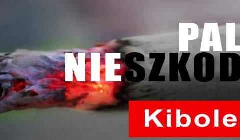 Legia, Mioduski, Kibice!